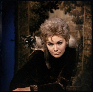 kim-novak-ralph-crane-shoot-1958-4